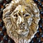 Lion Head 2 a